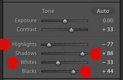 Lightroom Basic panel sliders