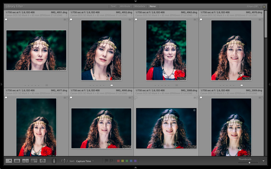 Thumbnails in the Lightroom Library module