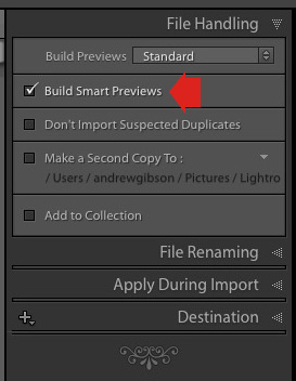 Lightroom Import window