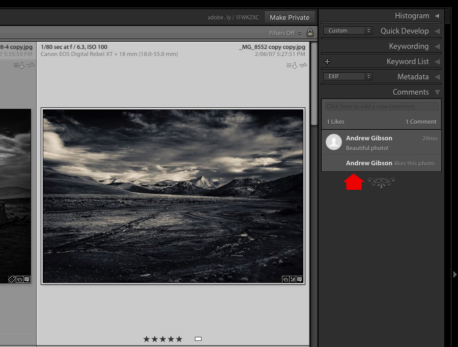 Comment made in Lightroom web shown in Comments panel in Lightroom Library module