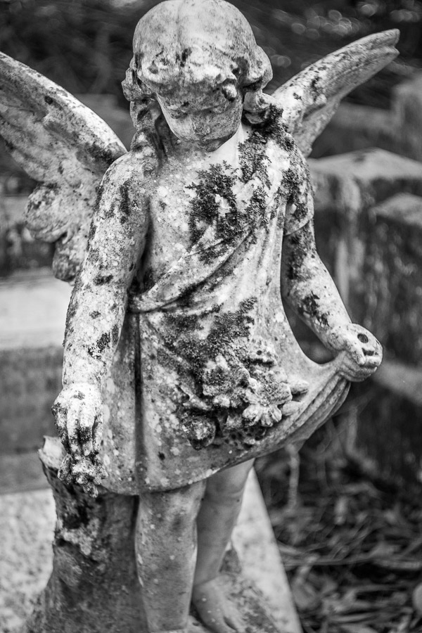 Black and white photo of a statue of an angel taken with Meyer-Optik Gorlitz Primotar 50mm f3.5 lens