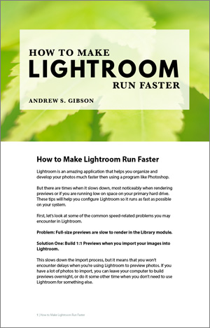 How to Make Lightroom Run Faster PDF