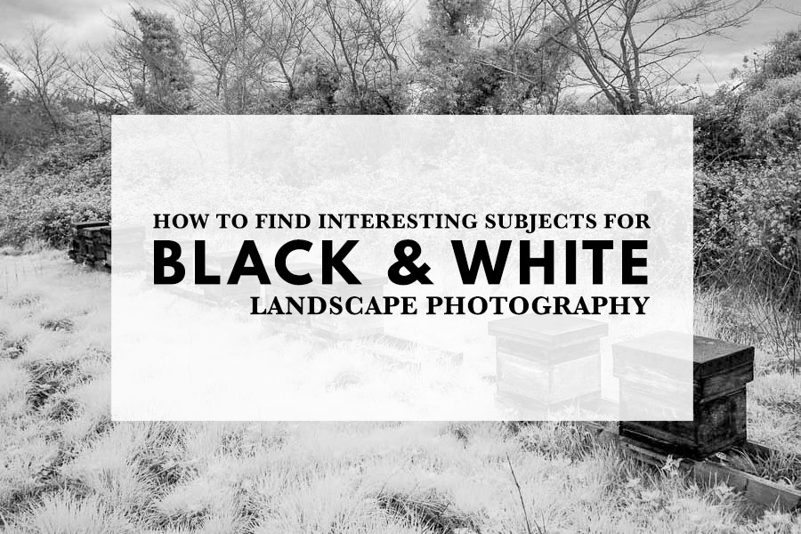 How to Find Interesting Subjects for Black & White Landscape Photography