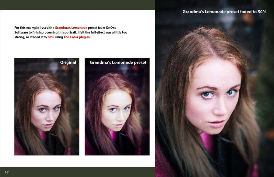 Mastering Lightroom: Book Two –The Develop Module