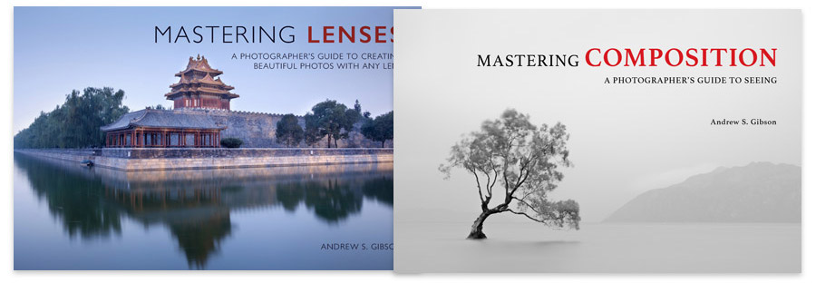 Mastering Lenses & Mastering Composition ebook bundle