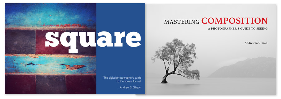 Mastering Composition and Square photography ebooks