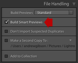 Lightroom inport window showing Build Smart Previews box
