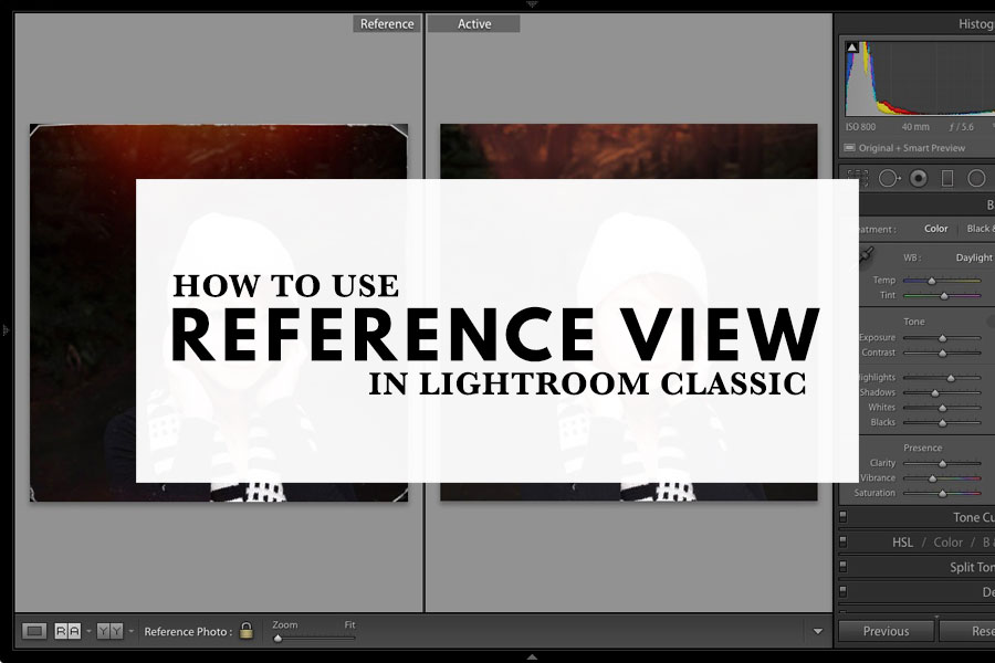 How to use Reference View in Lightroom Classic