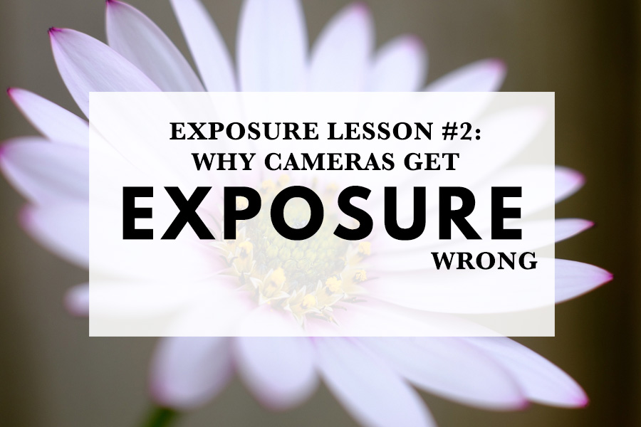 Exposure Lesson #2: Why Cameras Get Exposure Wrong
