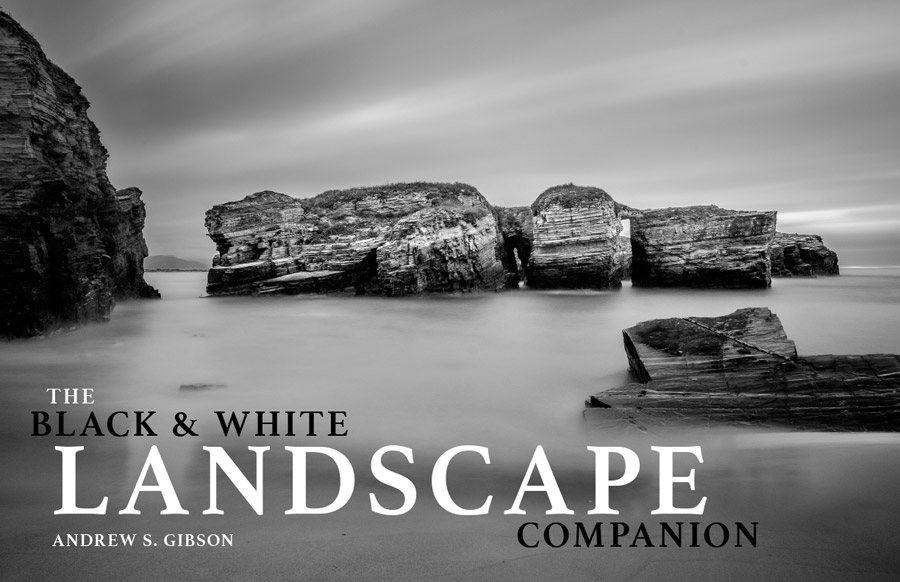 The Black & White Companion ebook