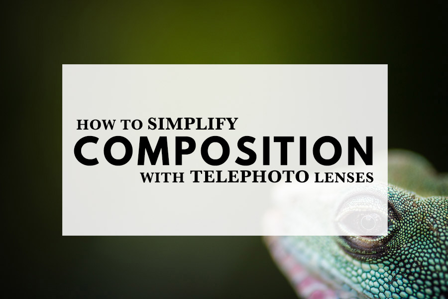 How to Simplify Composition with Telephoto Lenses