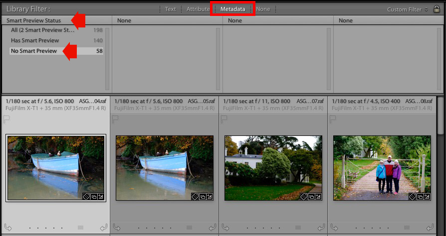 Lightroom filter bar searches
