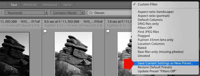 Lightroom Library filters