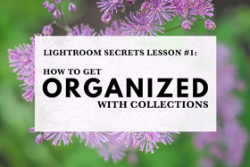 Lightroom Secrets Lesson #1: How To Get Organized With Collections