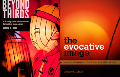Beyond Thirds & The Evocative Image ebooks