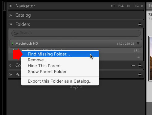 Merging Lightroom Catalogs