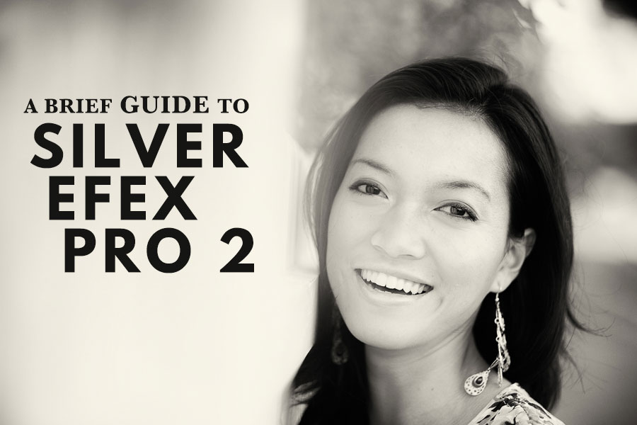 A Brief Guide To Silver Efex Pro 2