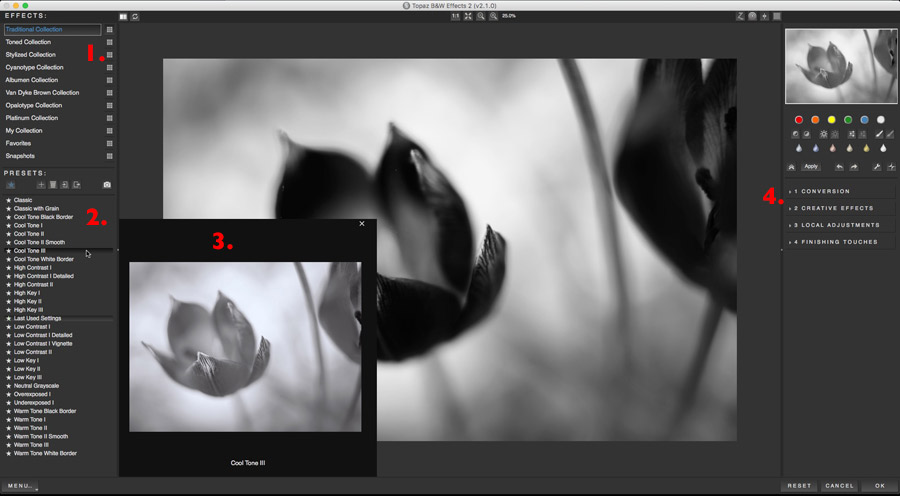 How To Bring Old Processes Back To Life With Topaz B&W Effects