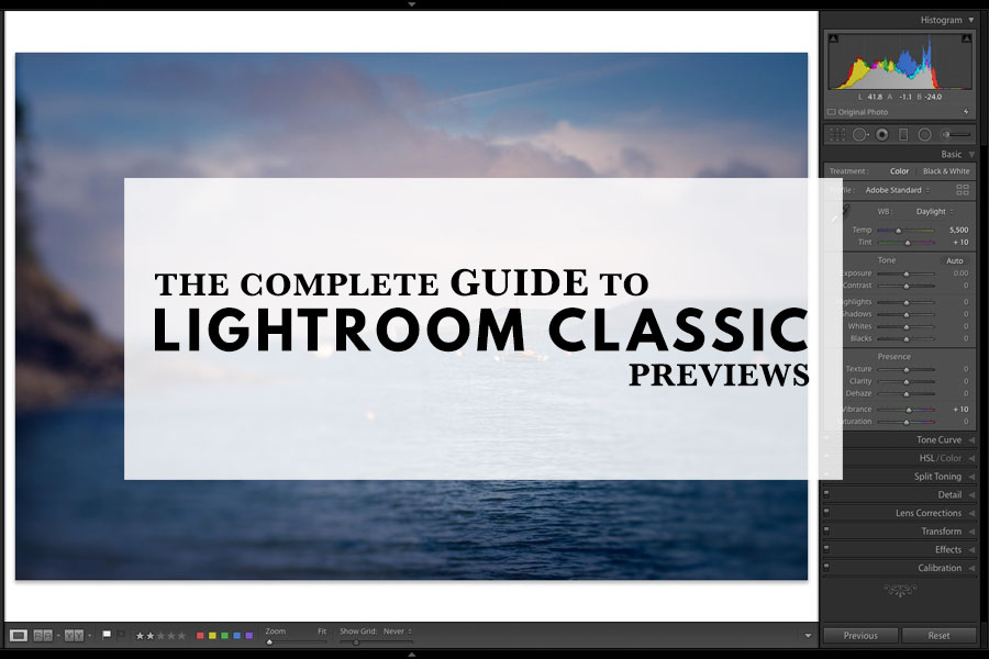 The Complete Guide To Lightroom Classic Previews | The