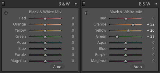 Lightroom B&W panels