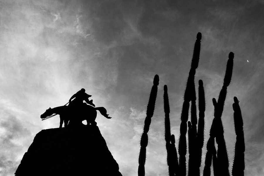 Dramatic silhouette of statue and cactus in black and white