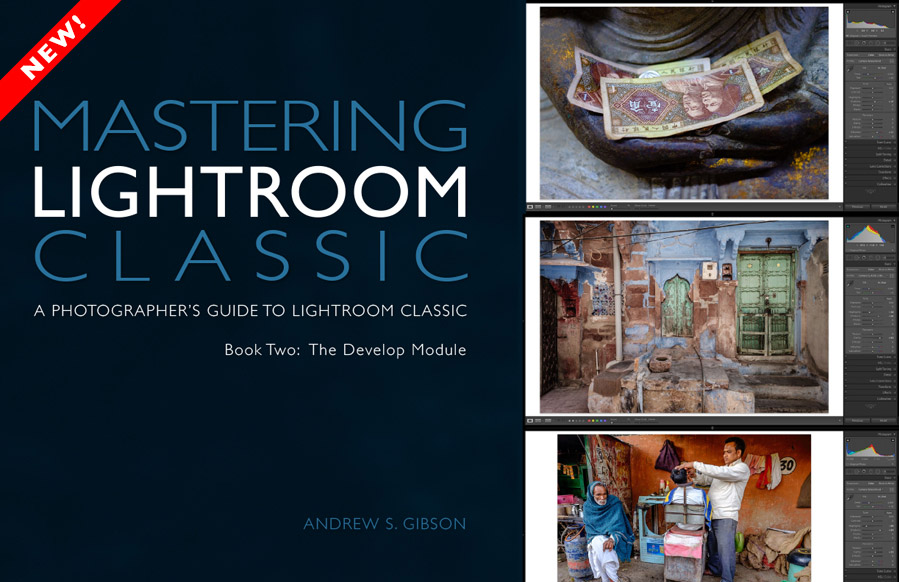 Mastering Lightroom Classic Library module ebook