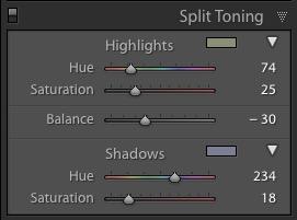 Lightroom Classic Split Tone panel
