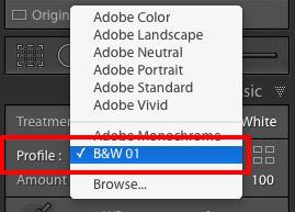 Adobe B&W 01 color profile