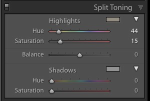 Split Toning panel Lightroom 6