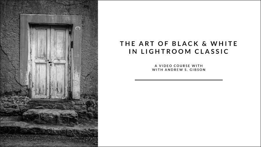 The Art of Black & White in Lightroom Classic video course